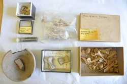 Ancient Sumerian Relics Found in English Cupboard