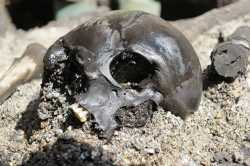 Evidence of Gruesome Ancient Ritual Unearthed in Denmark